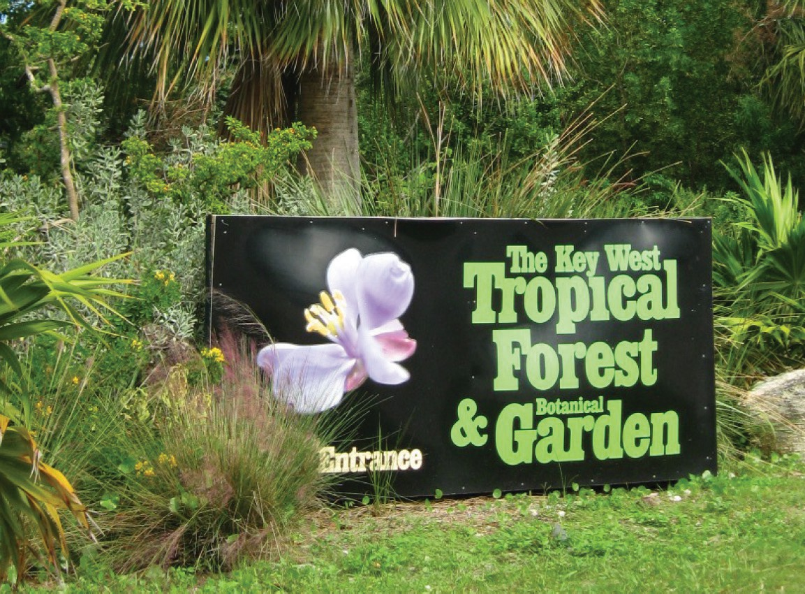 Gardenfest Returns To The Key West Tropical Forest And Botanical Garden Celebrate Reery Of