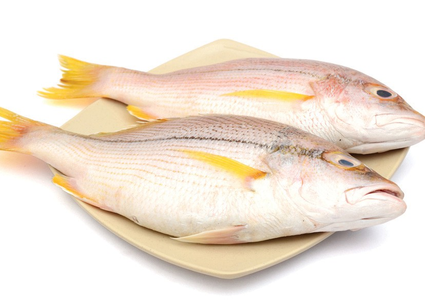 ¦ Fishbusterz Retail Seafood Market: Delicious fresh local yellowtail snapper $17.99 pound. — 6406 Maloney Ave., Key West 305-294-6456 http://www.keywestseafooddepot.com