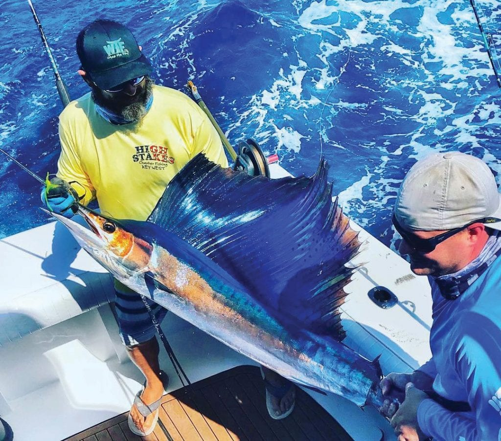 ¦ High Stakes Charters: Sailfish on the High Stakes! — Capt. Jason Jonas Oceanside Marina 5950 Peninsular Ave, Slip #659, Key West 305-294-8040 http://highstakescharters.com/
