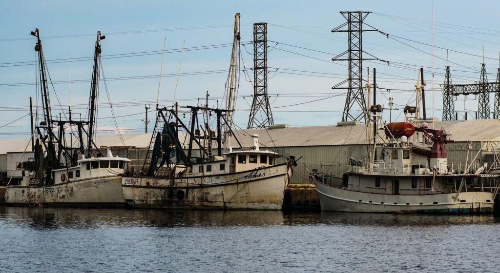 Stock Island Marina is a historic shrimp boat haven. COURTESY PHOTOS