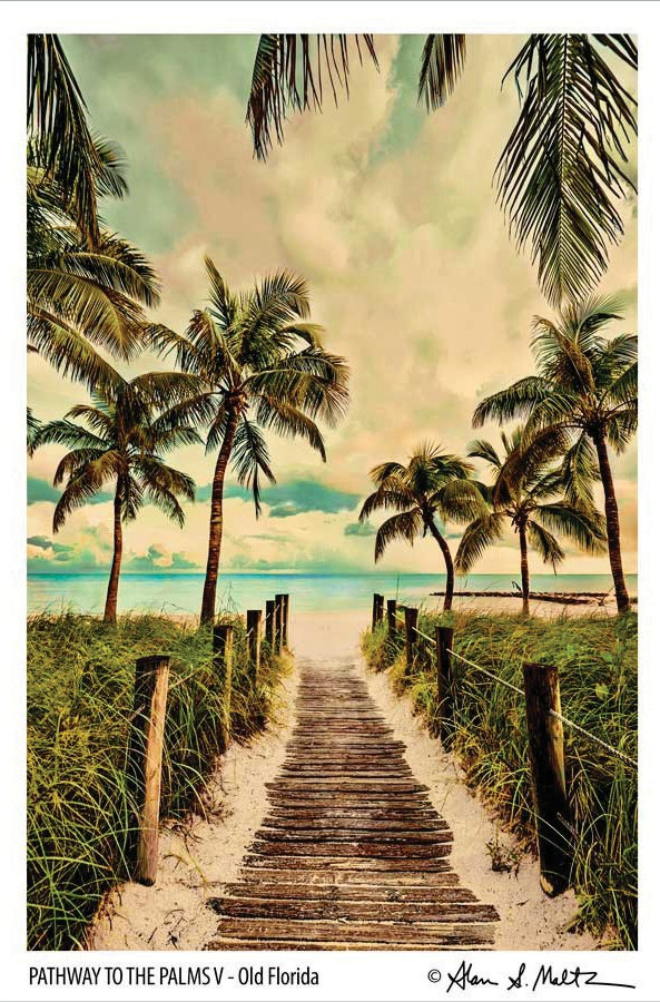 """Pathway to the Palms V"""
