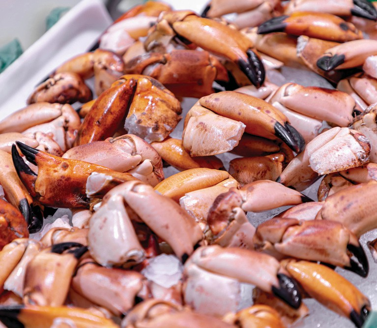 ¦ Fishbusterz Retail Seafood Market: Fishbusterz Seafood Market is the locals' source for fresh local seafood straight from the dock. Come visit our market and see why! — Fishbusterz Retail Seafood Market 6406 Maloney Ave., Key West 305-294-6456 www.keywestseafooddepot.com