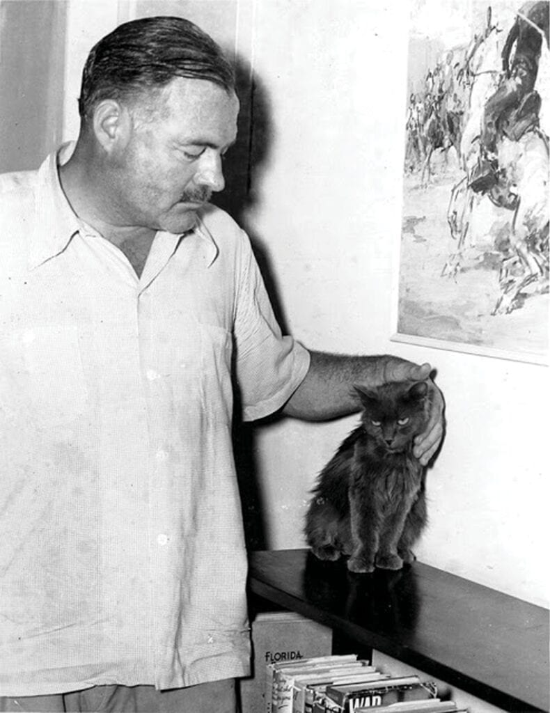 Author Ernest Hemingway pets one of the cats at his home in Key West. COURTESY OF THE HEMINGWAY HOME AND MUSEUM