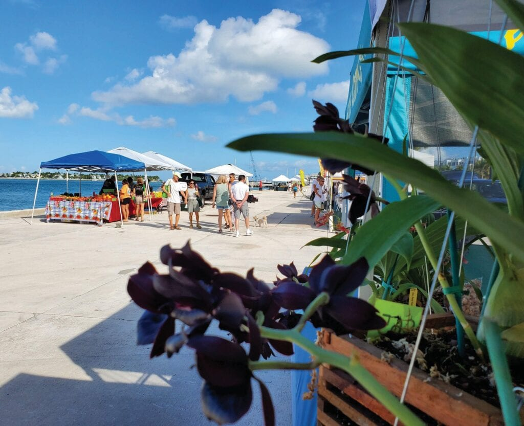 The Truman Waterfront Farmers Market is open 3 p.m.-sundown Thursdays at Truman Waterfront. The market features fresh produce, baked goods, honey, fresh seafood, cheese, international cuisine and more. www.keysartisanmarket.com. COURTESY PHOTO